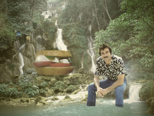 Selleck waterfall sandwich 3