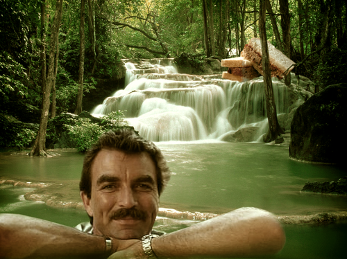 Selleck waterfall sandwich 1