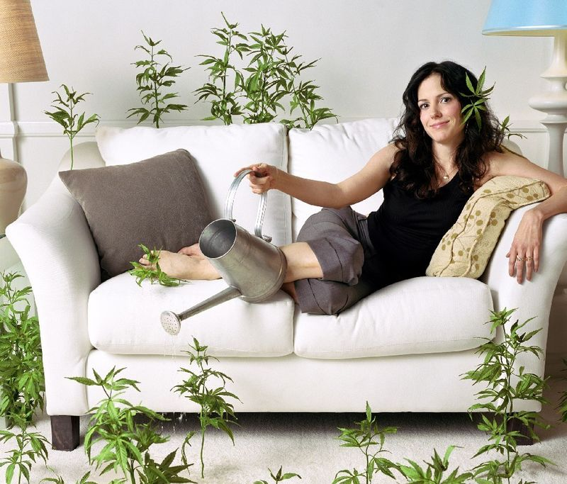 Mary-louise parker_weeds